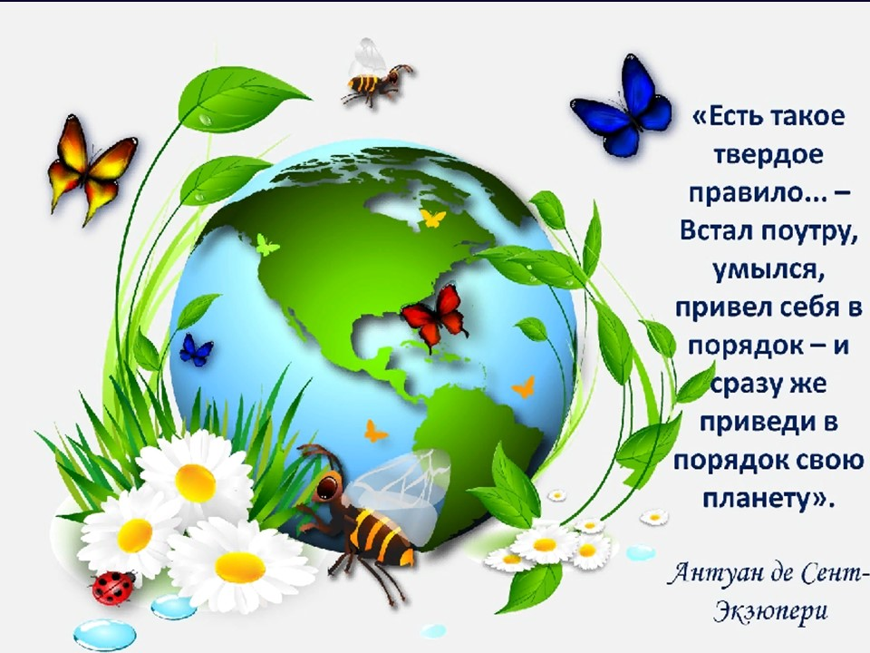Картинка о природе по экологии
